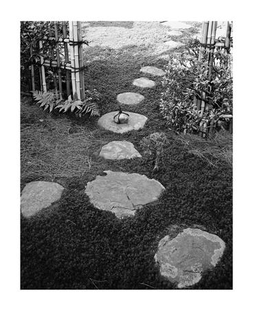 《関守石 聚光院》1955–1965年 写真:岩宮武二 ©IWAMIYA Aya