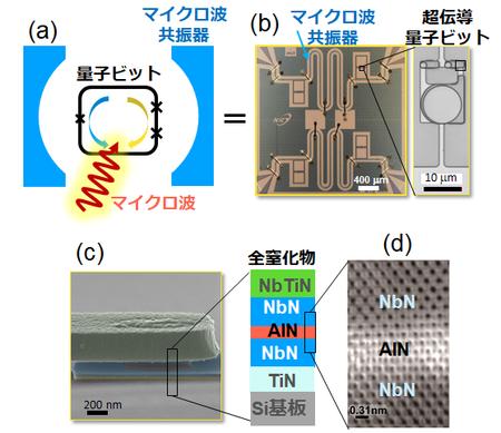 シリコン基板を用いた窒化物超伝導量子ビットの開発に成功