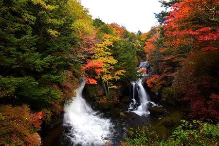 「日光の社寺」世界遺産登録20周年の日光 紅葉ピークを発表!