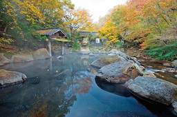 Trip Courses to Enjoy Hot Spas, Nature and Cuisine in Kumamoto Prefecture Recommended by Celebrities