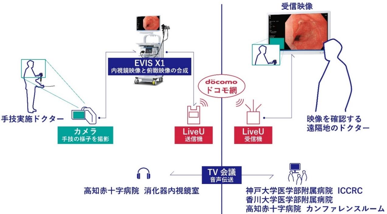 日赤 医療 センター ドクター line