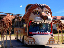 ライオンバスに乗って接近する動物にエサあげを楽しもう