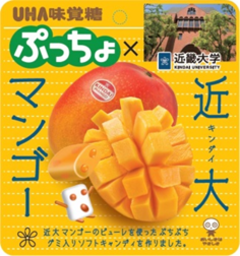 "Kindai University Selling ""Kindai Mango Soft Candy"" in Taiwan"