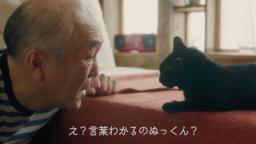 宮崎県都城市 シティープロモーション この冬、黒猫と魔法おじさんの 不思議な物語がはじまる!