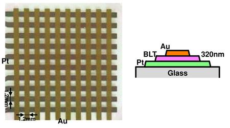 メムキャパシタ(a)デバイス構造