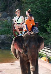 ゾウの背中に揺られて広場をゆったりお散歩
