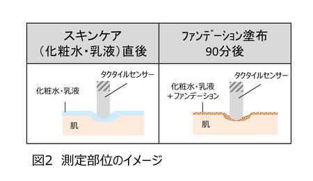 測定部位イメージ