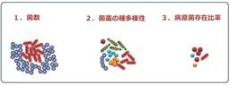 図1 菌の実態の評価指標(菌の存在様式のイメージ図)