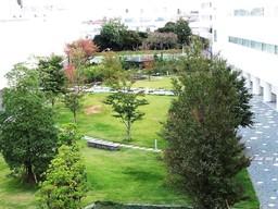 小田原事業場の中央に配置した緑地帯(アークスクウェアーガーデン)