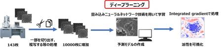ディープラーニング技術を用いた新素材開発手法の開発