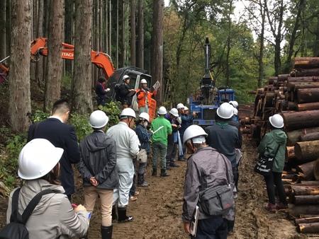 スギの伐採現場を視察(中蒲みどり森林組合・五泉市)