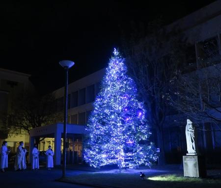 恒例のクリスマス行事始まる。今年は祈りを込めたブルーライトアップ。